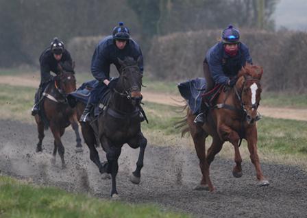 Richard Phillips Horses On Gallop